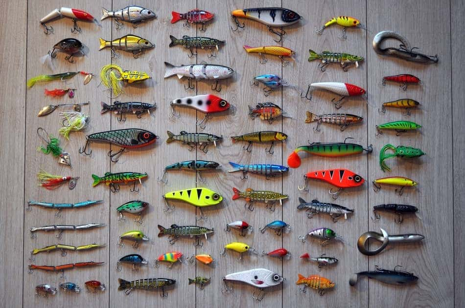Wall of fishing lures