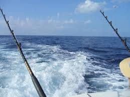 Fishing rods trolling for fish in the sea