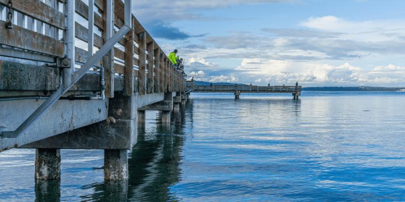 fishing gear when pier fishing