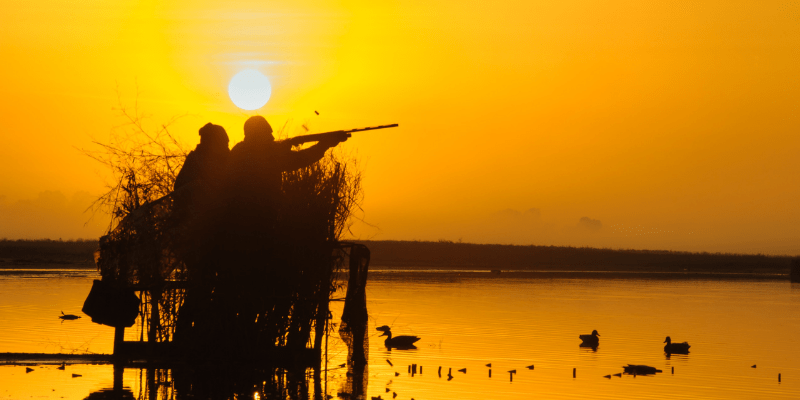 choosing the right choke for duck hunting